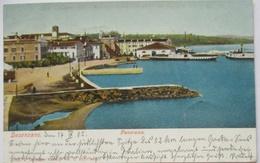 Italien Desenzano Del Garda, Panorama, 1905 (80092) - Ohne Zuordnung