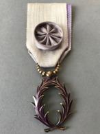Médaille D'Officier Des Palmes Académique (Provenant Du Cadre Fabriqué Le Propriétaire était Sculpteur JT... - Médailles & Décorations