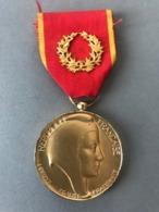 Médaille Société Industrielle De L'Est M.J. THOUVIGNON (Provenant Ducadre Fabriqué Le Propriétaire était Sculpteur JT... - Médailles & Décorations