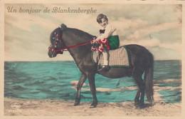BLANKENBERGE / UN BONJOUR DE BLANKENBERGE / EZELTE RIJDEN - Blankenberge