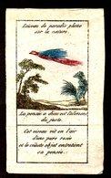 L'OISEAU DE PARADIS PLANE SUR LA NATURE - Dipinto A Mano - Fine '800 Primi '900 - Mm. 61 X 102 - Vieux Papiers