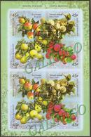 2019-2456-2459 M/S Russia  FLORA: FRUITS: Strains Of Apple Trees  Mi 2673-2676 Used CTO - Usati