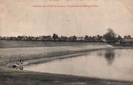 Collection De La Forêt De Tronçais (Allier) La Chaussée De L'Etang De Pirot, Pêcheur En Barque - Moulins