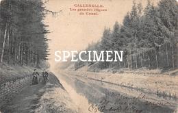 Les  Grandes Digues Du Canal - Callenelle - Péruwelz