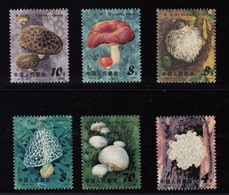 CHINA 1981 EDIBLE MUSHROOMS   CATALOGUE SG 3092/3097  MNH - Nuovi