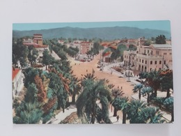 Philippeville Avenue Barrot Algérie - Skikda (Philippeville)