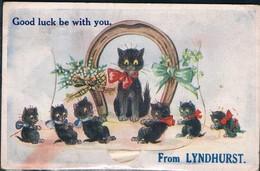 Chats Noir - Cats  -katzen -  Poesjes Hoefijzer - Chats