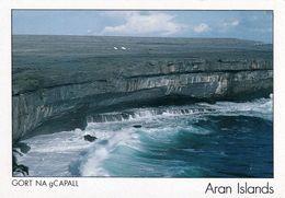1 AK Irland Ireland * Inismor Island (auch Inishmore Oder Inis Mór Genannt) Ist Die Größte Insel Der Aran Islands * - Galway