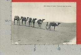 CARTOLINA VG ALGERIA - SCENES Et TYPES - Caravane Dans Les Sables - 9 X 14 - 1918 - Algeria