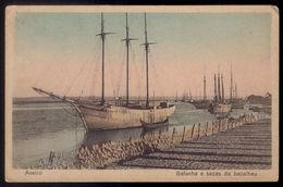 Postal Antigo AVEIRO / GAFANHA E SECAS Do BACALHAU - Edição De SOUTO RATOLHA Barcos Bacalhoeiros. Old Postcard Portugal - Aveiro