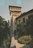 (D366) - CARPENETO (Alessandria) - Scorcio Del Castello - Alessandria