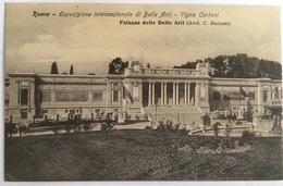 V 72651 Roma - Esposizione Internazionale Di Belle Arti - Vigna Cartoni - Palazzo Delle Belle Arti - Expositions