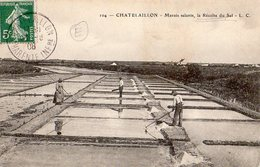 Châtelaillon - Marais Salants - Châtelaillon-Plage