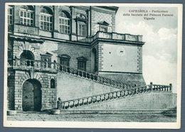 °°° Cartolina - Caprarola Particolare Della Facciata Del Palazzo Farnese Nuova °°° - Viterbo