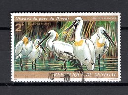 SENEGAL  PA   N° 135    OBLITERE   COTE  0.20€   OISEAUX  ANIMAUX - Sénégal (1960-...)
