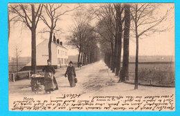CPA MONS : Avenue Du Tir Animée ( Avec Attelage Chien ) - Ed. Nels Série 6 N° 44 - Circulée En 1903 - 2 Scans - Mons