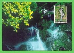 Liechtenstein 2001 Mi.Nr. 1255 , EUROPA CEPT Lebensspender Wasser - Maximum Card - Ersttag Vaduz 5. März 2001 - Maximumkarten (MC)