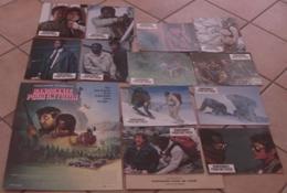 AFFICHE CINEMA ORIGINALE FILM RANDONNEE POUR UN TUEUR + 12 PHOTOS EXPLOITATION POITIER BERENGER 1988 - Posters