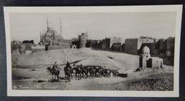8) Le Caire - CAIRO - Egypte - Photo Carte - Panoramique - Format: 15/7.5cm - 2 Scans - Le Caire