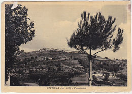 CITERNA - PERUGIA - PANORAMA - VIAGG. 1956 -13183- - Perugia