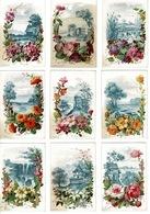 Chromo-image FLEURS - ( 9 Cartes Rigide) D.125 X8 Cm Env. -différentes Fleurs Et Paysages Derrières. - Unclassified