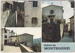 MONTEGONZI - AREZZO - SALUTI DA...- VEDUTINE -19175- - Arezzo