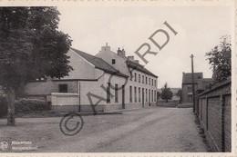 Postkaart-Carte Postale NIEUWRODE Meisjesschool  (B393) - Holsbeek
