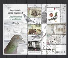 Belgique: Nouveauté 2020 **   La Colombophilie Et Son Histoire - Libretti 1962-....