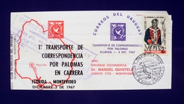 1967 URUGUAY V96 1ST FLIGHT COVER VUELO VOL FLORIDA-MONTEVIDEO Kuriertaube BIRD PALOMA MENSAJERA MESSENGER PIGEON - Uruguay