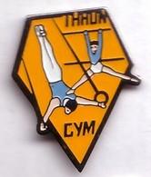 SP387 Pin's Gym Gymnastique Thaon Les Vosges Achat Immédiat - Gymnastique