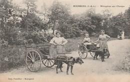 37 BOURGUEIL Ménagères Aux Champs Imp Fusellier - Autres Communes
