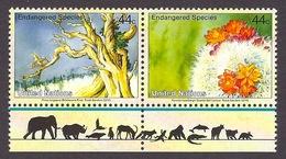 United Nations / ONU 2010 - Endangered Species, Plants, Flowers, Pinus Longaeva, Parodia Haselbergi MNH - Unused Stamps