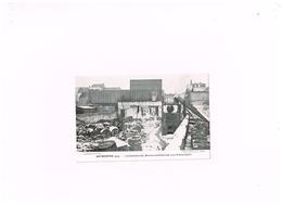 Antwerpen 1914.LOzanastraat.Konservenfabriek Van Vincentelli.WWI. - Antwerpen