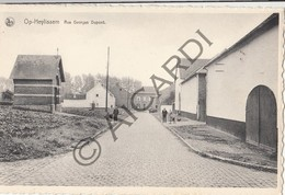 Postkaart-Carte Postale OPHEYLISSEM Rue Georges Dupont (B302) - Hélécine