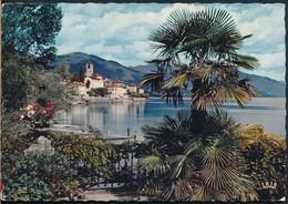 °°° 19419 - SVIZZERA - TI - BRISSAGO , LAGO MAGGIORE - 1961 With Stamps °°° - TI Tessin