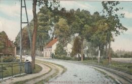 ***  ANVERS ***   HOOGSTRAETEN - Chaussée Pavée Et Ligne De Tram, Animée Colorisée TTB Timbrée 1911 - Belgique