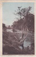 71. ETANG-SUR-ARROUX. Confluent Du Mesvrin Et De L'Arroux - Francia