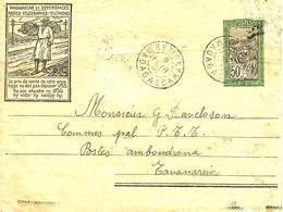"""Sur ENTIER Cachet De """" BETROKY"""" (par TULEAR)  Pour Tananarive  - 1931 - - Lettres & Documents"""