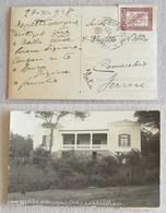 Cartolina Illustrata Dal Paraguay Per Comacchio (FE, Ita) - 28/11/1948 - Paraguay