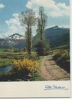 15 CHEYLADE ... Vallée De La Cheylade Et Le Puy Mary (Albert Monier A 10 516) - Sonstige Gemeinden