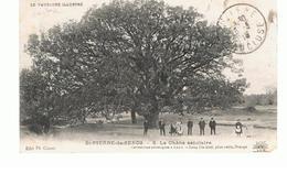 CPA  St-PIERRE-de-SENOS (84) Le Chêne Séculairede 1919 (Animée) - France