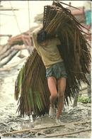Bangladesh (Asia) Raccoglitore Di Rami Di Palme - Bangladesh