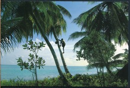 °°° 19473 - MALDIVES THE PARADISE ISLAND °°° - Maldives