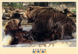 ZOO - Mestske Medvedarium (Bear Enclosure) Beroun, CZ - European Brown Bear (Ursus Arctos Arctos) - Tchéquie