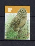 N° 4218 Vogel André Buzin - Velduil RP Inscriptie Ongetand Met Rugnummer - Belgique
