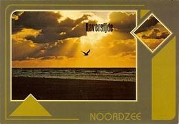 """CP De RAVERSIJDE ( Raversyde ) """" Noordzee """" - Oostende"""