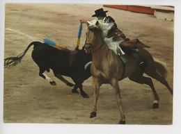 Corrida : Rejeneador - Corrida De Toros, Course De Taureaux, Bull Race - Corrida