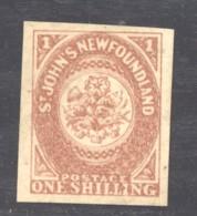 Terre-Neuve  :  Yv  2  *   Faux Ancien - Newfoundland