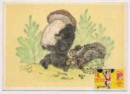 CARTE MAXIMUM CM Card USSR RUSSIA Sport Barbel Bear Squirrel Mushroom Humour Comics Painting Olympic Games - Cartes Maximum