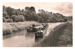 Saint Vit -  Canal  - Peniche -  CPSM  ° - Frankreich